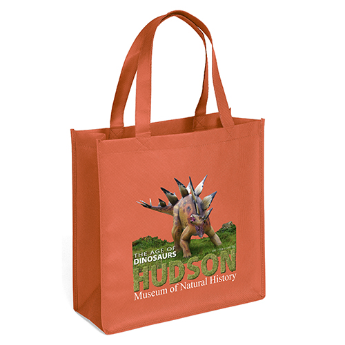 Non Woven Recycled Bags