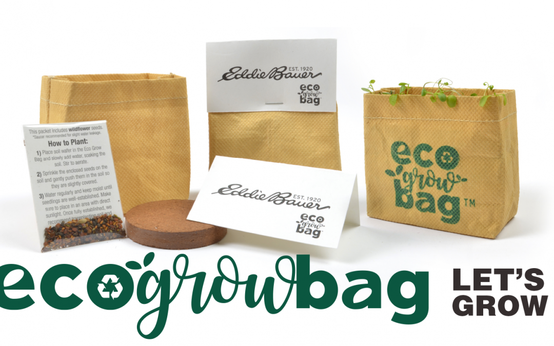 Eco Friendly Seed Paper