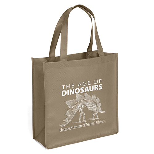 Eco Friendly Recyclable Non Woven Shopping Bags